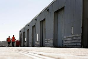 Sheds on Queens Wharf which were slated for preservation. Photo / Dean Purcell