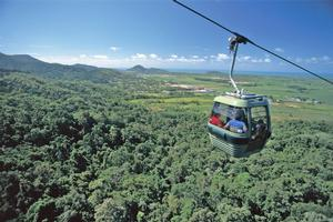 Skyrail Rainforest Cableway. Photo / Supplied