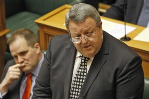 Gerry Brownlee, Minister for Economic Development. Photo / Mark Mitchell