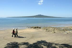 Narrow Neck Beach, where 48 sea slugs were recently found. File photo / Richard Robinson