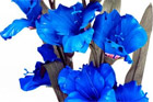 For The Love Of Art  - Blue Flowers. Photo / Supplied