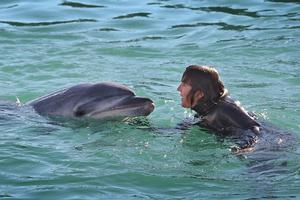 Pam Hanretty swims with Moko the dolphin in the Tauranga harbour last month. Photo / Bay of Plenty Times