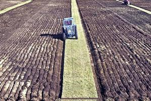 An increase in the soil's carbon content could earn New Zealand billions in emissions credits. Photo / Rotorua Daily Post