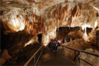 Lucas Cave within the Jenolan caves. Photo / Supplied