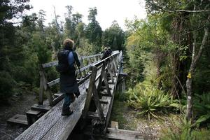 Walking the 55km Hump Ridge Track is like stepping back in time. Photo / Supplied