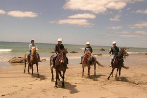 Briar's Horse Treks offers an exhilarating experience. Photo / Supplied