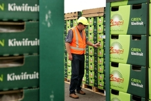 Zespri says the collaborative marketing system is working and has growers' support. Photo / Alan Gibson