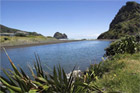 The lagoon at Piha is said to be polluted. Photo / Getty Images