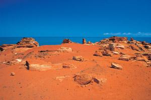View dinosaur footprints at Gantheaume Point near Broome. Photo / Tourism Western Australia