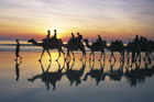Visitors flock to Cable Beach for camel rides, especially in the evenings, as the temperature drops and the sun sets over the Indian Ocean. Photo / Tourism Western Australia