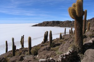 "The rocky, cactus-studded ""island"" of Incahuasi. Photo / Grant Dyson."
