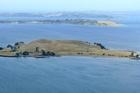 An aerial view of Browns Island in the Hauraki Gulf. Photo / Martin Sykes