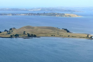 An aerial view of Browns Island in the Hauraki Gulf. Photo / Martin Sykes