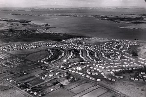 An aerial shot of Tamaki state houses in Auckland. File photo / NZ Herald