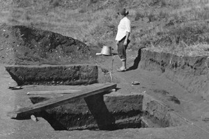 An excavation of the moa hunters' site on Motutapu Island from which relics of the first Auckland settlers were obtained. File Photo / NZ Herald
