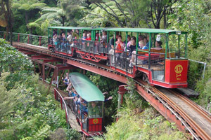 The Driving Creek Railway. Photo / Supplied
