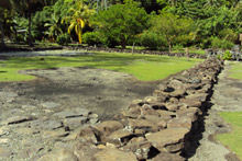 Huahine has many archaeological sites where ancient marae once lay. Photo / Graeme Lay