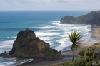 Lion Rock at Piha. Photo / Paul Estcourt