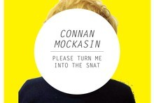 Connan Mockasin <i>Please Turn Me Into The Snat</i>. Image / Supplied