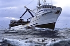 TV show The Deadliest Catch features men on deck battling raging waves while trying to fish in their bounty. Photo / Supplied