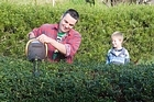 Springtime means tidying up the garden by trimming hedges. Photo / Paul Estcourt
