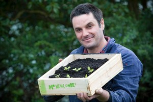 Justin Newcombe with his home-made seed-raising tray. Photo / Richard Robinson