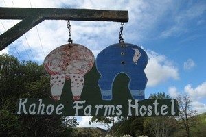 Kahoe Farms in Kaeo, Northland. Photo / Diana Clement