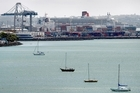Ports of Auckland agreed to public access - as long as it didn't affect cruise ship activities. Photo / Steven McNicholl