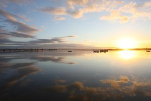 In and around Tauranga harbour, three iwi say Crown confiscation of their lands during the 1860s will make gaining customary title problematic. Photo / Bay of Plenty Times