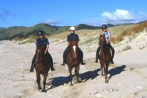 The horse riding at Pakiri Beach is world-famous. Photo / Supplied
