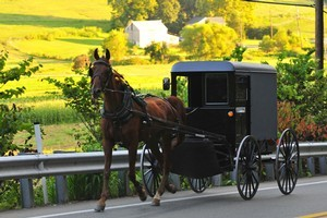 Publicity of rape, incest and grisly dog gassings follow booming simple-living Amish sect. Photo / Thinkstock