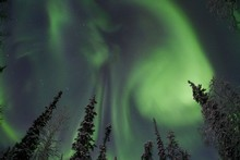 Aurora borealis - the Northern Lights - can be monitored via a new streaming website. Photo / CSA