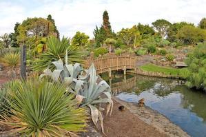 The bridge at the Auckland Botanic Gardens in Manurewa. Photo / Supplied