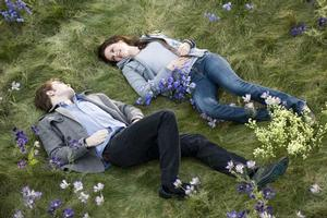 Movie adaptations of Stephenie Meyer's Twilight books have been big hits, and big earners.