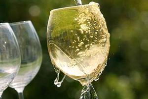 Scientists say if we must tipple, we should do so wisely to help protect us from a variety of cancers. Photo / NZ Herald