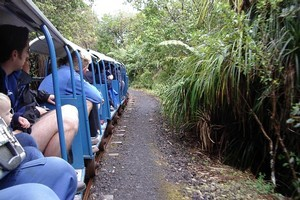 The Waitakere tramline offers a great armchair travel experience. Photo / Supplied