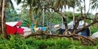 View: Saleapaga tsunami survivors thrive in the mountains