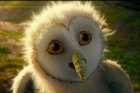 <i>Legend of the Guardians</i> has much to keep the kids entertained. Photo / Supplied