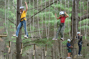 The Tree Adventures courses at Woodhill Forest are great fun for kids and can help boost their confidence. Photo / Supplied