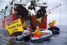 Environmental lobbyists such as Greenpeace have battled against bottom trawling for years. Photo / Greenpeace