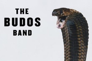 Album cover from The Budos Band -  The Budos Band III . Photo / Supplied