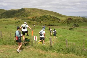 The West Coaster run between Bethalls Beach and Mokoroa through the Waitakere Ranges is for the toughest of runners. Photo / Supplied