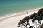 Otama Bay on the Coromandel peninsula. Photo / Whitianga.co.nz