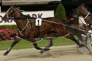 Kiwi Ingenuity may never race again but she has a big  career as a broodmare ahead. Photo / Greg Bowker