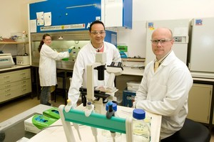 Mesynthes' scientific director Barnaby May, right, with scientists Sandi Dempsey and Leonardo Negran. Photo / Mark Mitchell