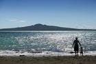 But tiny jellyfish spoilt a first swim at Takapuna. Photo / Herald on Sunday