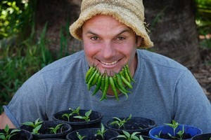 Justin Newcombe has fun with chilli peppers. Photo / Sarah Ivey