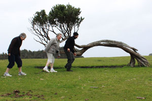 The Chatham Islands offer some weird and wonderful sights. Photo / Jim Eagles
