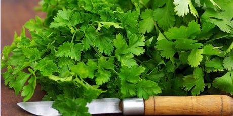 Instead of taking a knife to weeds like coriander and parsley, let them grow out as they can be used to create splendid salads and dishes. Photo / Thinkstock