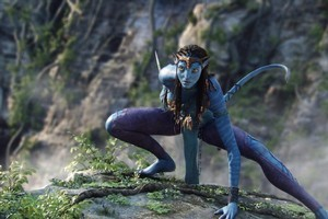 Avatar received a grant of $44.7 million. Photo / Supplied